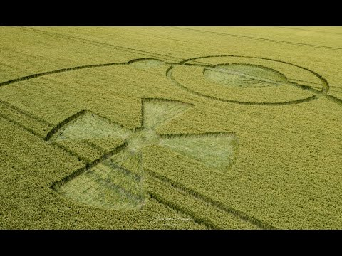 New crop circle discovered in Hunt's Down, Wiltshire – 17th June 2020