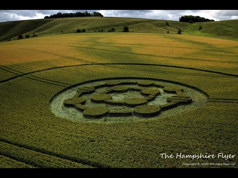 New Crop Circles Discovered In England, UK – July 2020