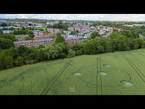 New Crop Circle Discovered In Derbyshire, UK – 29th July 2020