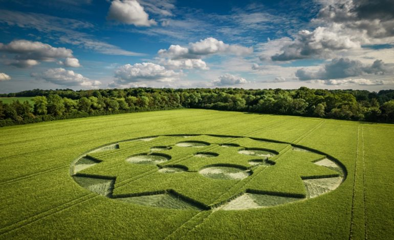 New Crop Circle Discovered In Hampshire, UK – 8th June 2021